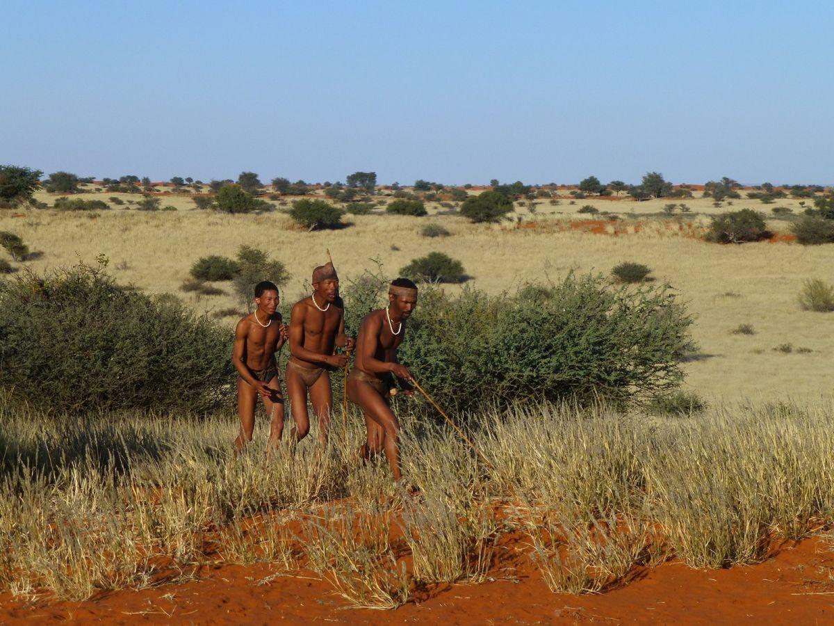Bushman bij Bagatelle game ranch