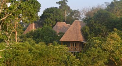 Bugoma Jungle Lodge