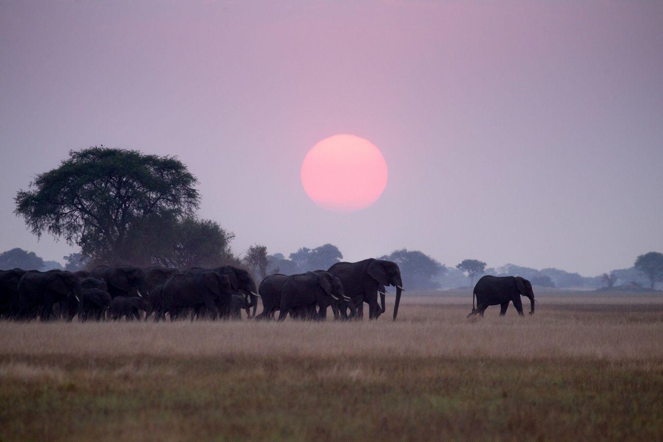 Busanga Plains Camp zonsondergang
