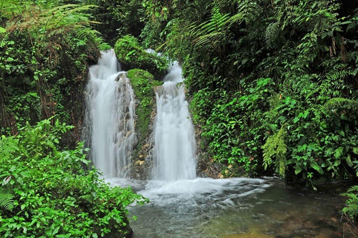 Munyaga Falls in Bwindi Impenetrable National Park