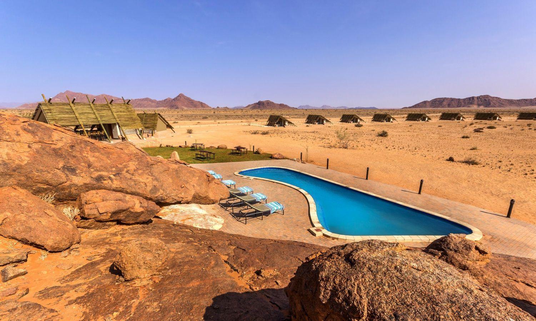 Desert Quiver Camp