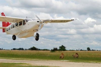 Fly-in safari