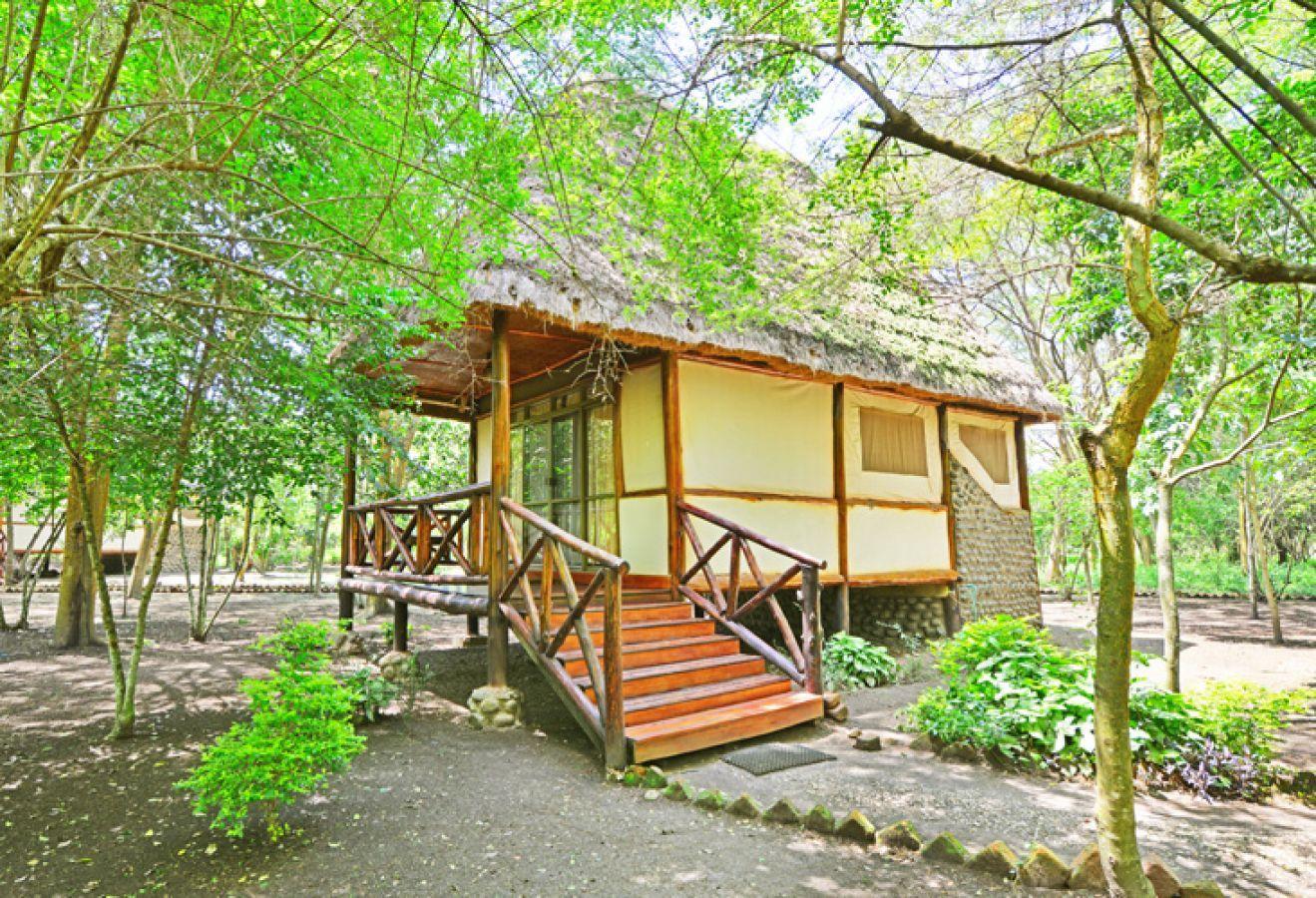 Ishasha Jungle Lodge