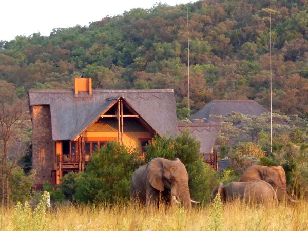 Kololo Lodge met olifanten