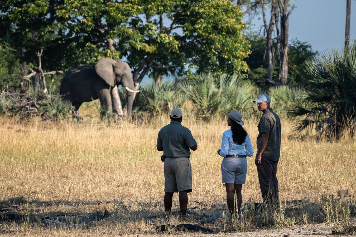 Kuthengo Camp wandelsafari olifant