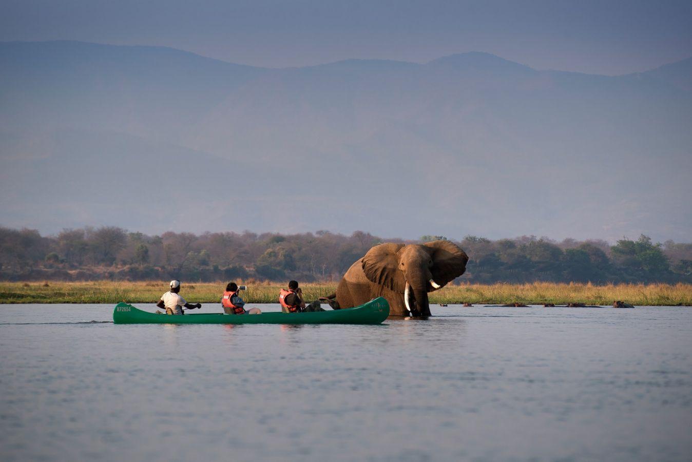 Mana Pools National Park kanosafari