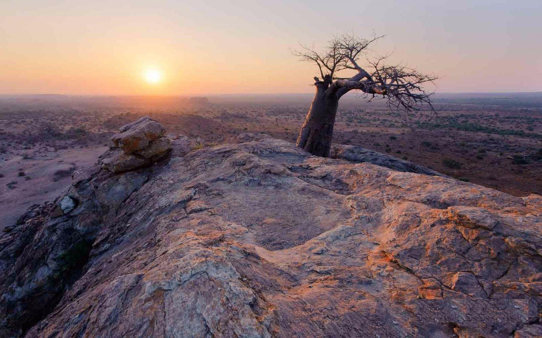 Mashatu Game Reserve uitzicht