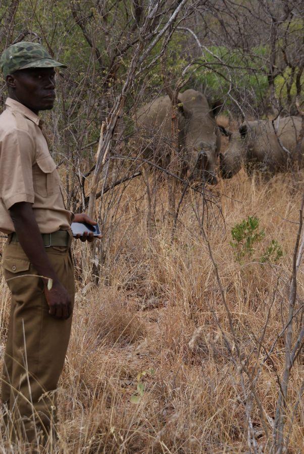 Rhino Tracking in Matobo National Park  - ©Fair Mundo Travel