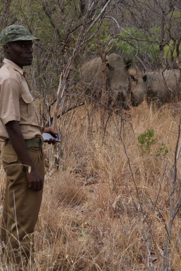 Rhino Tracking in Matobo National Park  - ©Fair Mundo Travel