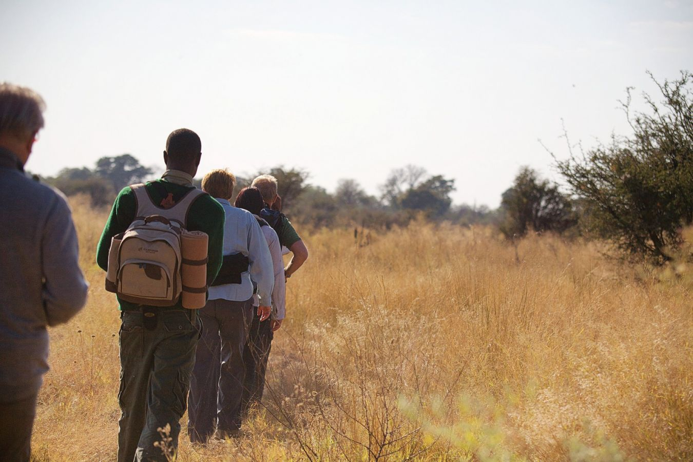 Moremi Crossing bush walk