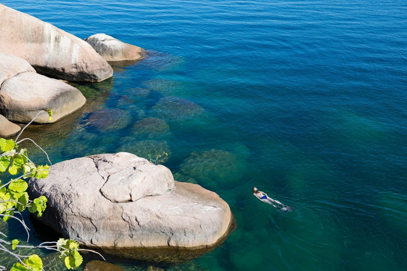 Mumbo Island Camp snorkelen
