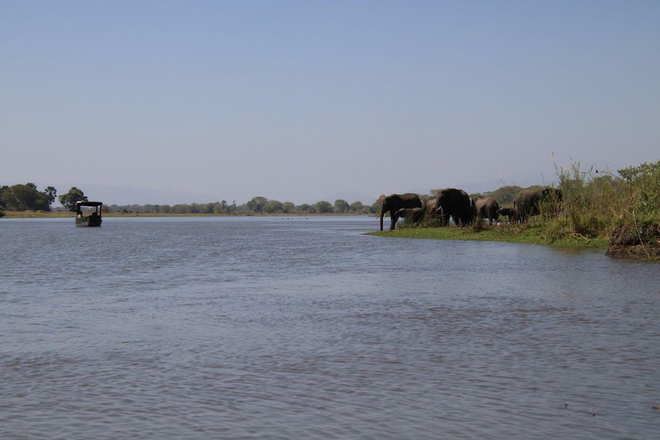 Mvuu Camp bootsafari Shire rivier