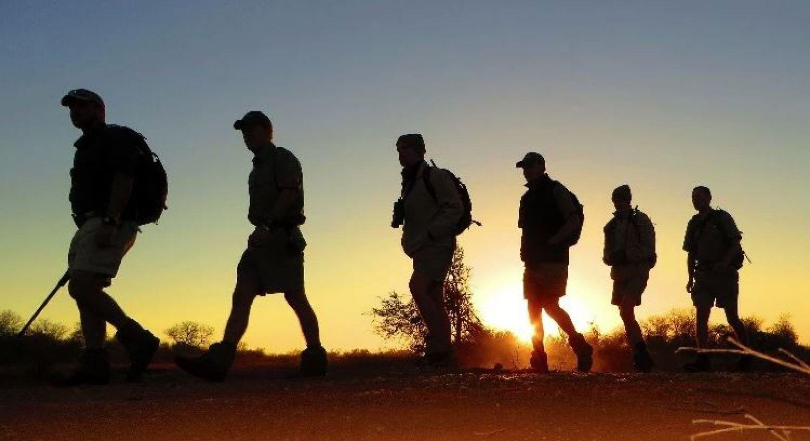 Pungwe Safari Camp walksafari