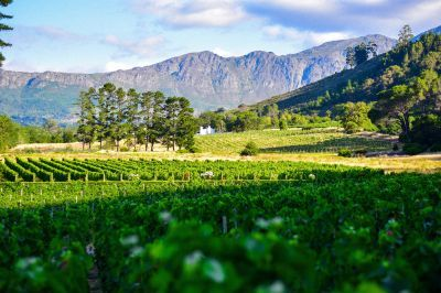 Robertson Wine Valley aan Route 62