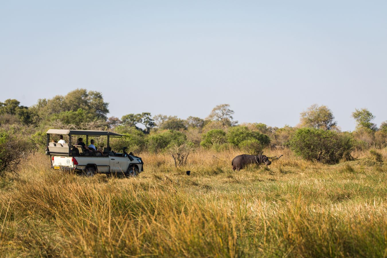 Sango Safari Camp - game drive
