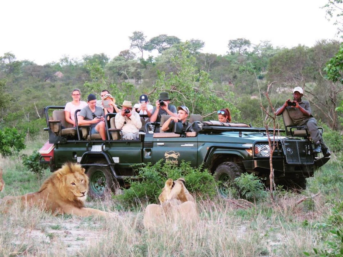 Shindzela Tented Camp - game drive