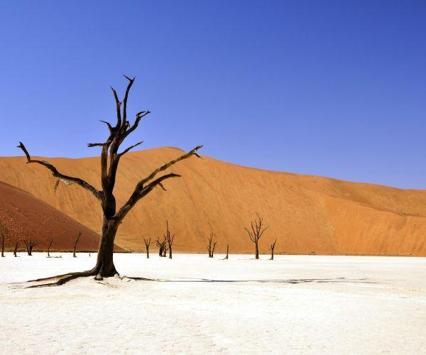 Selfdrive Namibië