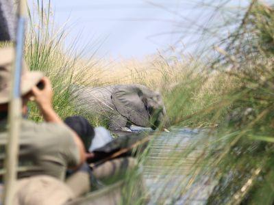 Kampeer groepsreis Zuid-Afrika, Zimbabwe & Botswana