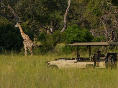 Luxe rondreis Namibië & Botswana