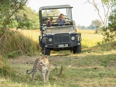Luxe rondreis Botswana met privé gids