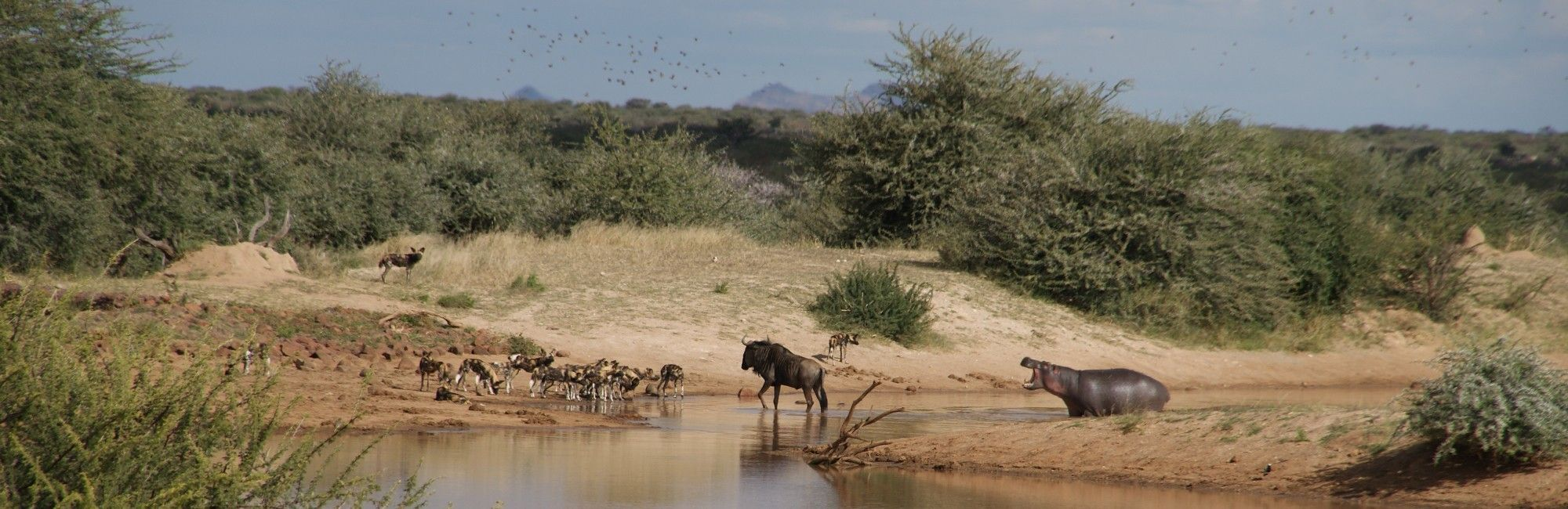 Namibie private reserve