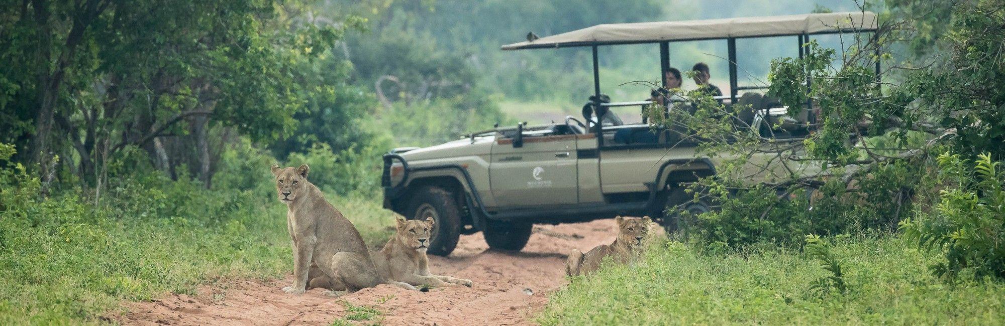 Individuele reizen Botswana