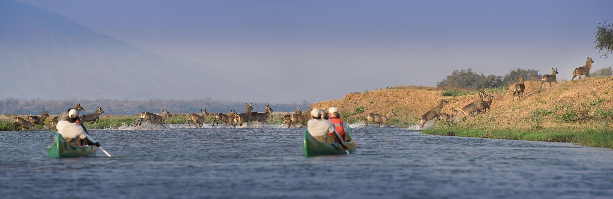 Zimbabwe Kano Zambezi