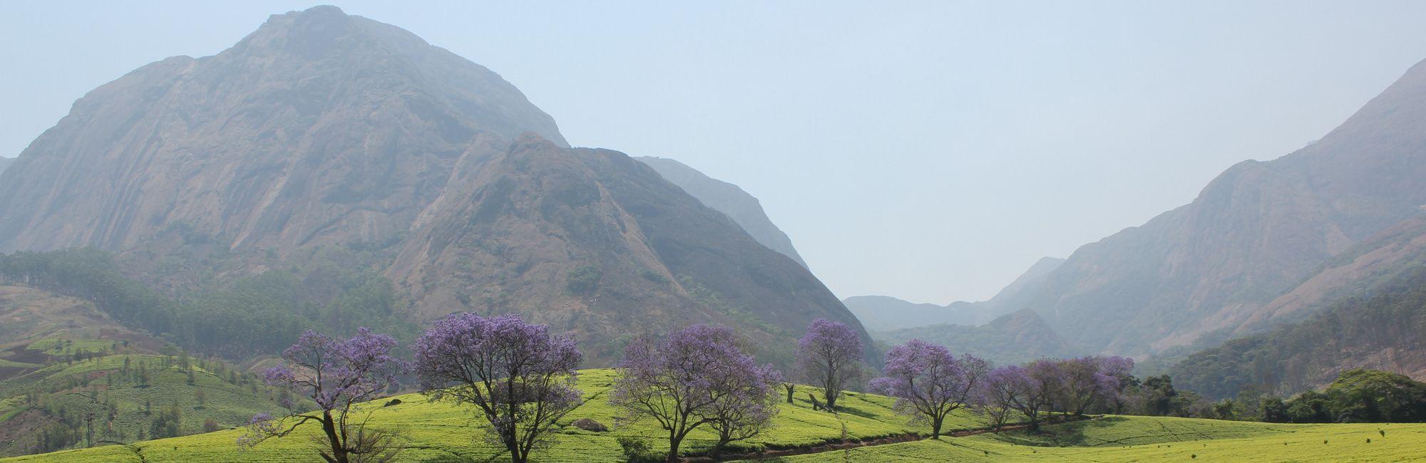 Mount Mulanje