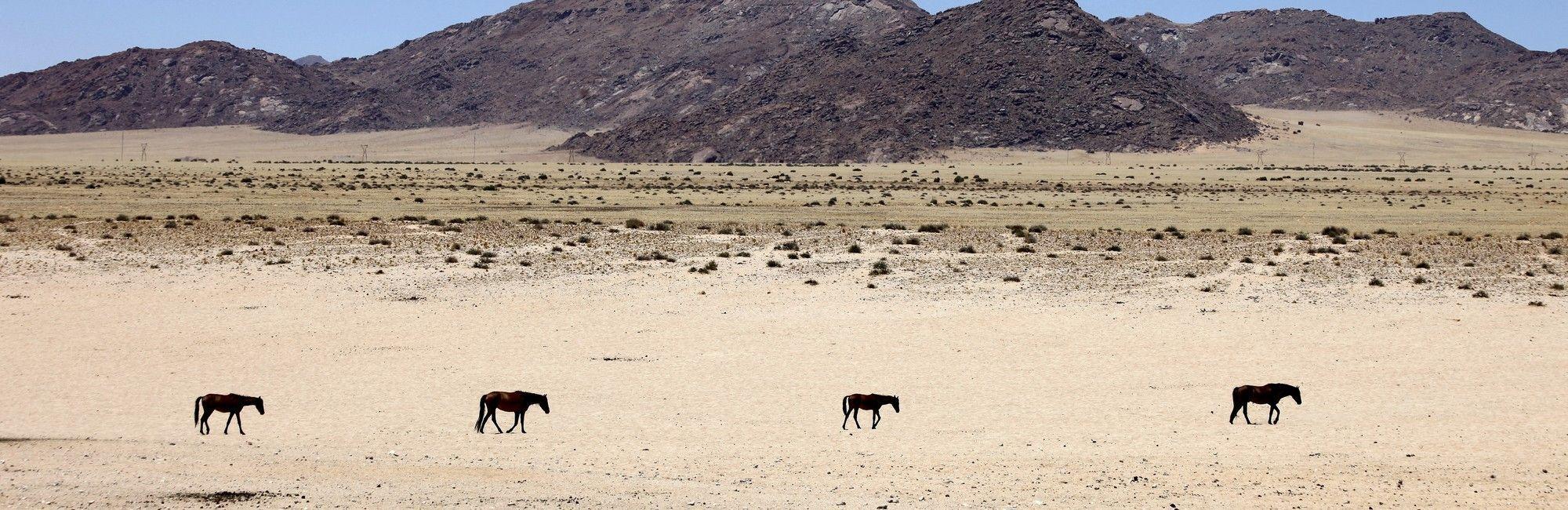 Aus, Kolmanskop, Lüderitz