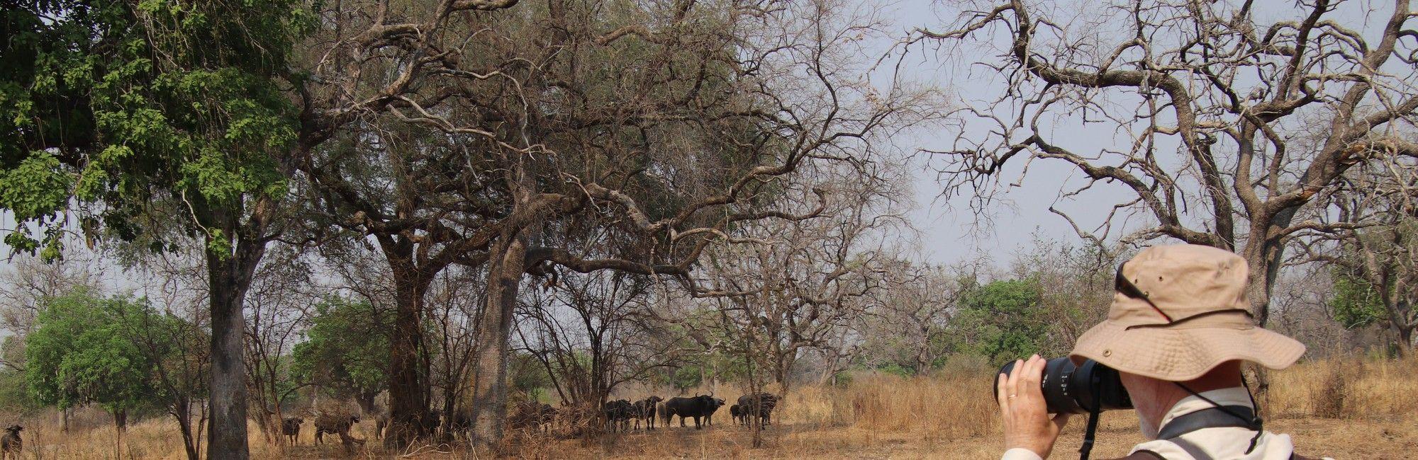 Zambia vakantie Lower Zambezi South Luangwa