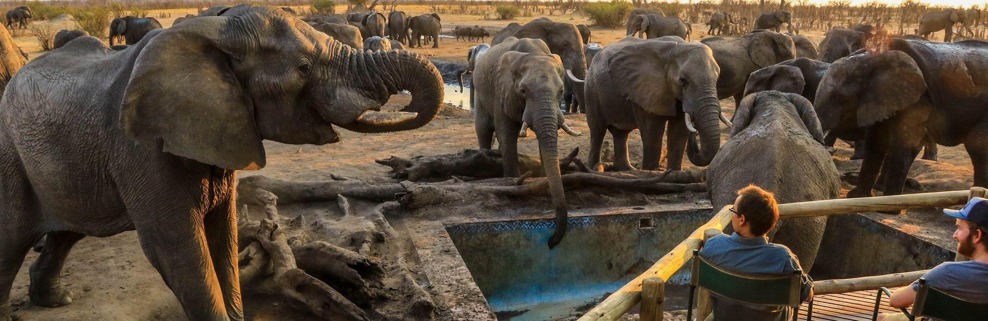 Zimbabwe Olifanten lodge