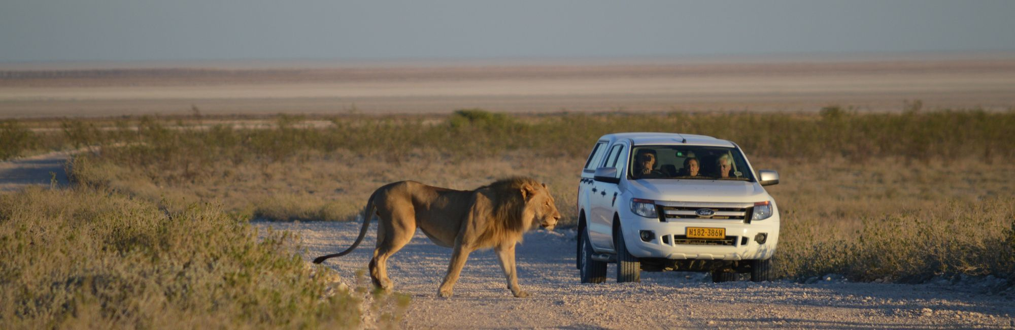 Namibie self drive safari