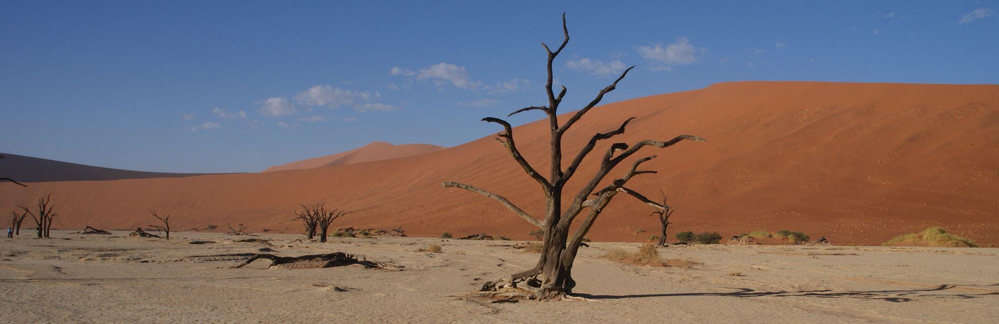 Namibie rode duinen