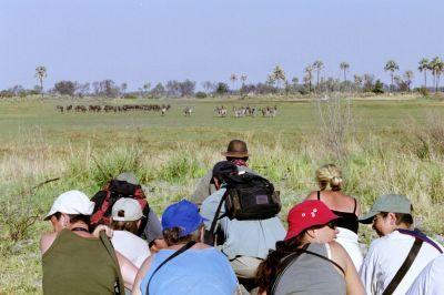 Kleinschalige groepsreizen Afrika