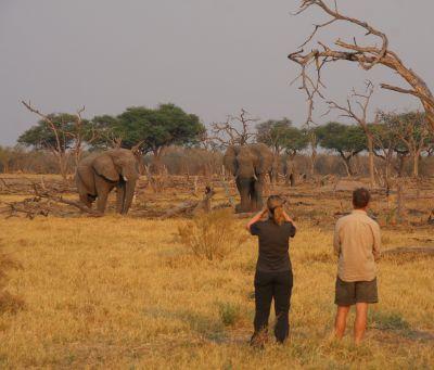 Individuele reizen Afrika