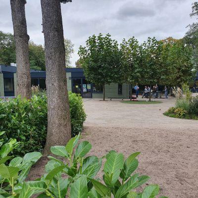 Tuinaanleg basisschool Driebergen