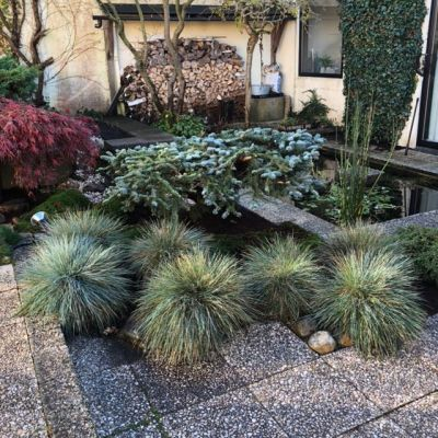 Groot tuinonderhoud patiotuin
