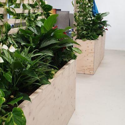 Plantenbakken kantoorpand Utrecht
