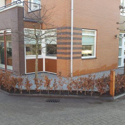 Tuinrenovatie Soest