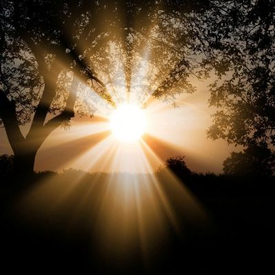 Verblind door de zon