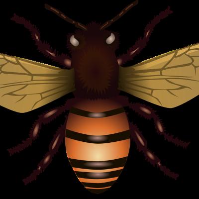 Bijenoorlog lang vóór oprichten imkersvereniging