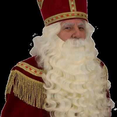 Intocht Sinterklaas digitaal