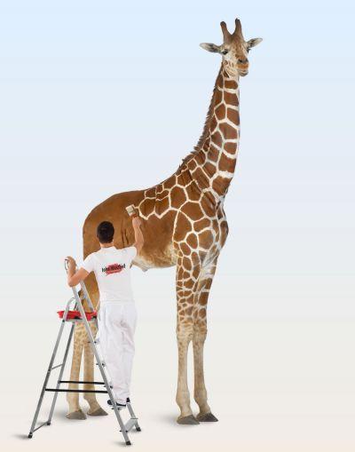 Giraf met een knipoog
