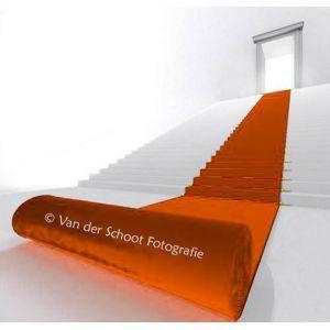 Oranje loper (b)200 cm. p/mtr.