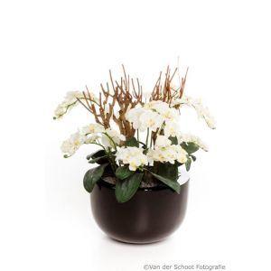 Bloempot hoogglans zwart (Ø)45x(h)28 cm. met orchideeën