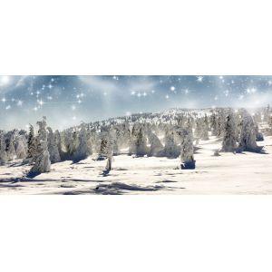 Decorwand wintersnow