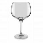 Gin Tonic glas huren? Van der Schoot Partyverhuur - snel en voordelig bezorgd!