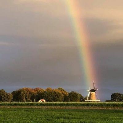 Commentaar overbodig: de regenboog
