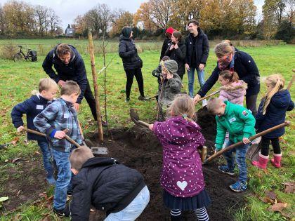Leerlingen planten walnoten op Noorder Eng