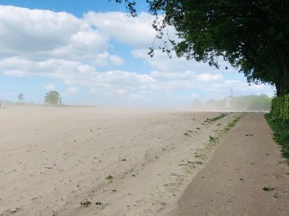 Nu op de Eng: Zandstormen